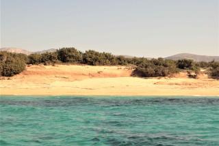 kedrodasos Alyko Naxos island kedros beach