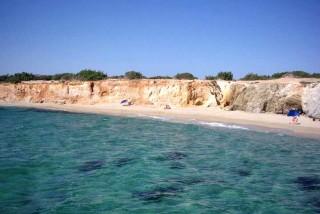 naxos-alyko-beach-trees